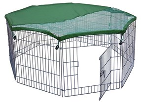 Rabbit Arena With Sun Roof, Silver/Green