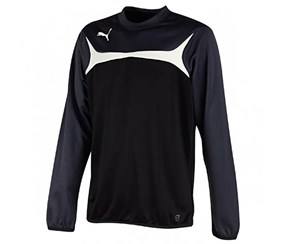 Puma Men's Sport's Top, Grey/Black